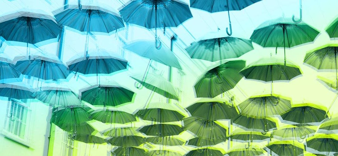Privacy Shield und Hongkong – Wie Europa seine demokratischen Standards verschachert
